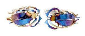 Longhorn beetle cufflinks in titanium - $418