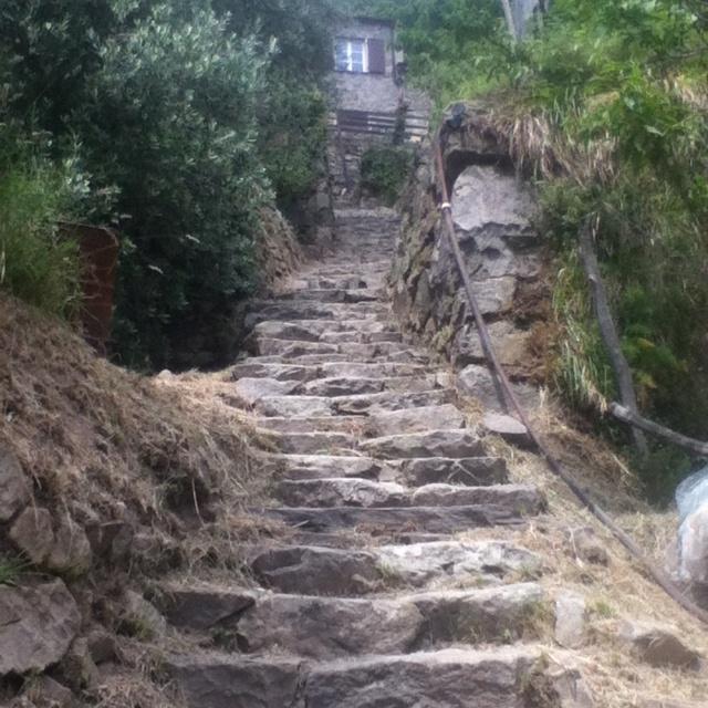 176 steps