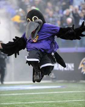 Poe Picture at Baltimore Ravens Photo Store