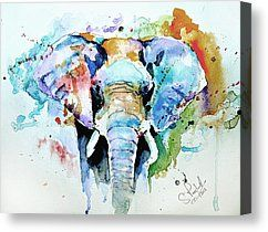 Wild Animal Painting Canvas Prints - Splash of colour Canvas Print by Steven Ponsford