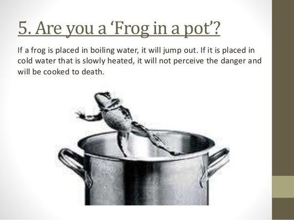 What are the best graphics showing the analogy of the boiling frog ...