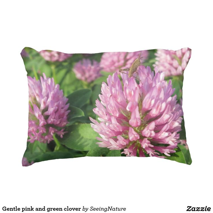 Gentle pink and green clover accent pillow