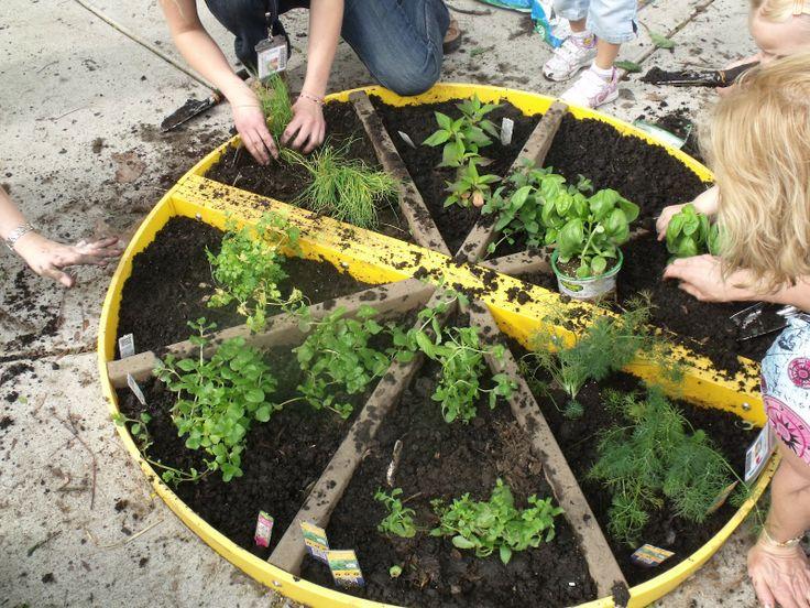 Herb Garden Ideas For Kids