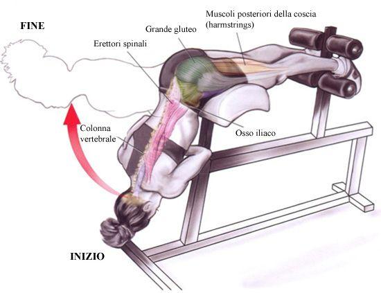 Esercizi per la schiena – Estensione lombare - Logon Prozis