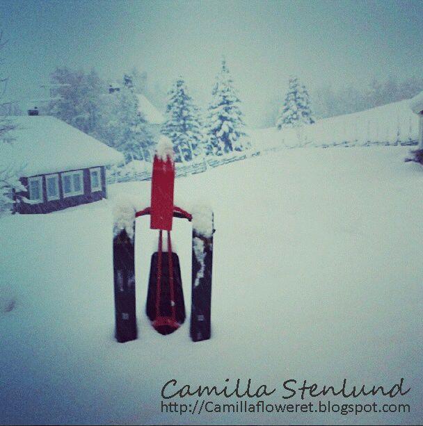 Camillas blogg om att leva i landsbygden i Norrland och hennes tankar och upplevelser i livet.