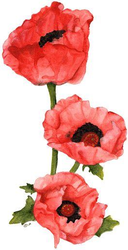 Dibujos de flores para imprimir-Imagenes y dibujos para imprimir