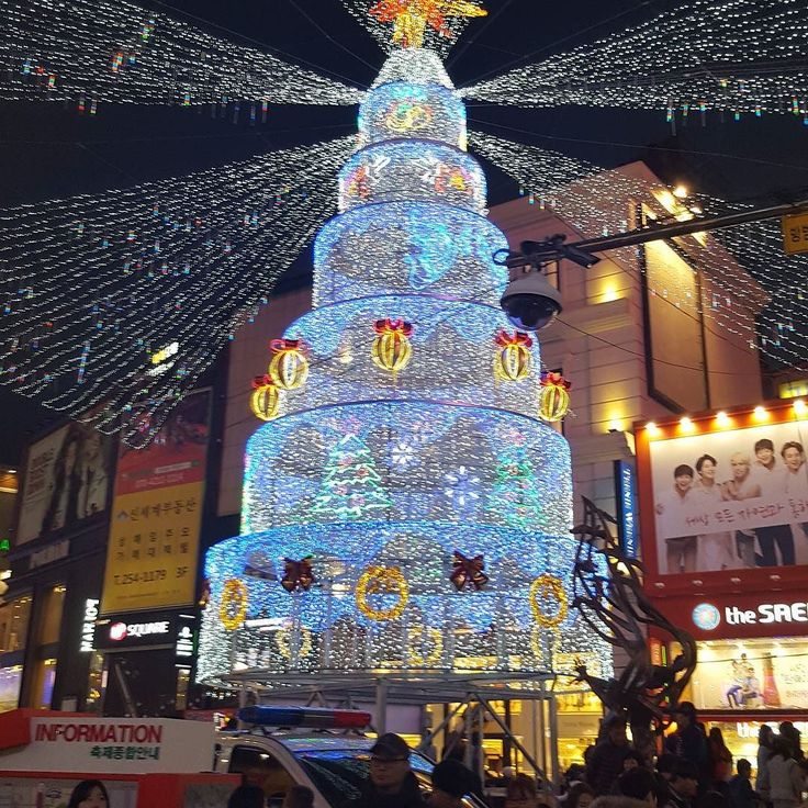 Went to #nampodong to see all fo the beautiful #christmaslights  #itsbeginningtolookalotlikechristmas #christmastree #christmasshopping #christmasinkorea