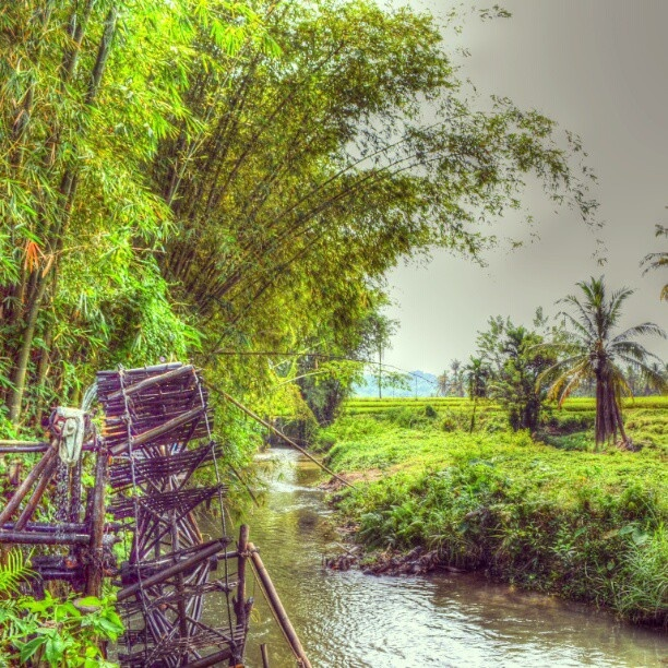 Traditional irigation - Location : Padang Sibusuk, West Sumatera. Good morning igers #iger #instagram #instanusantara #photooftheday #photography #android #nature #bamboo #river #allshot #nice #Nikon #rice #iphonesia #igaddict #HDR_Indonesia #HDR #landscape #morning #sky #colors antonifbrn trip to padang #mudik2012