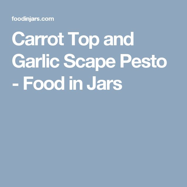 Carrot Top and Garlic Scape Pesto - Food in Jars