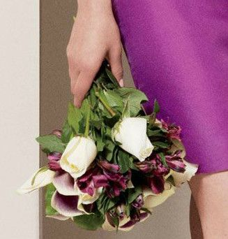 : Ideas, Dreams, Flowers
