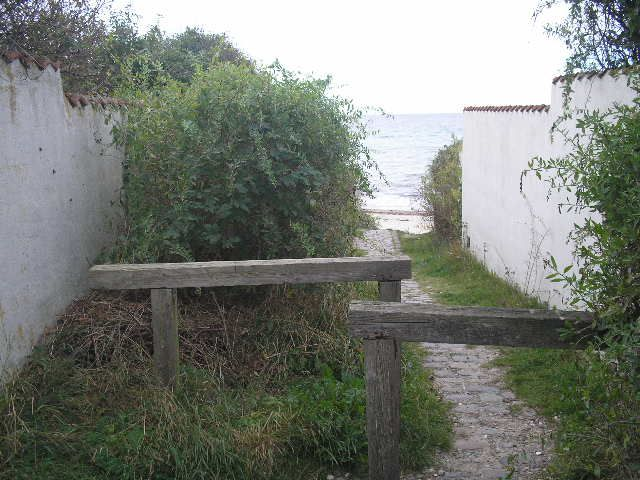 A path to Tisvilde beach