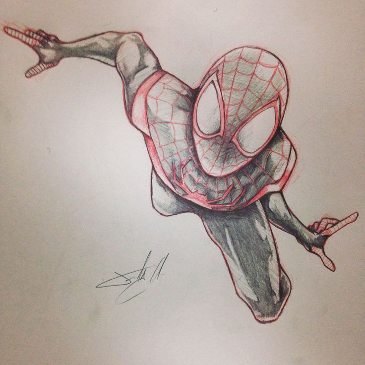 Dibujo De Spiderman A Color