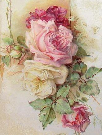 wonderful old roses print