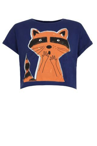 Racoon crop top- new look
