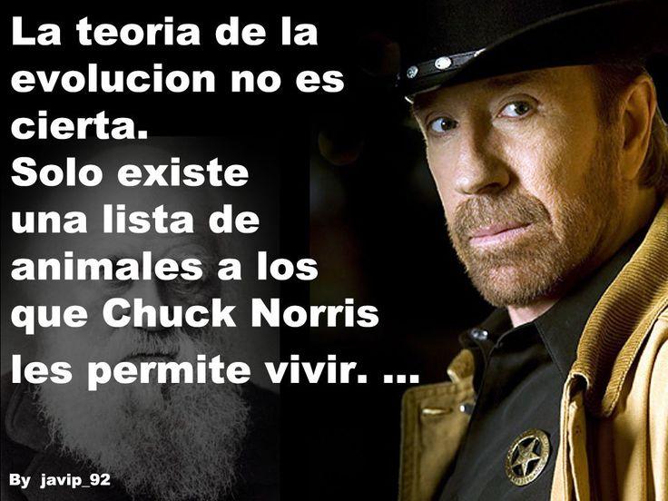 Memes-Chuck Norris
