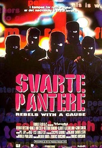 Svarte pantere (1992) | http://www.getgrandmovies.top/movies/1074-svarte-pantere…