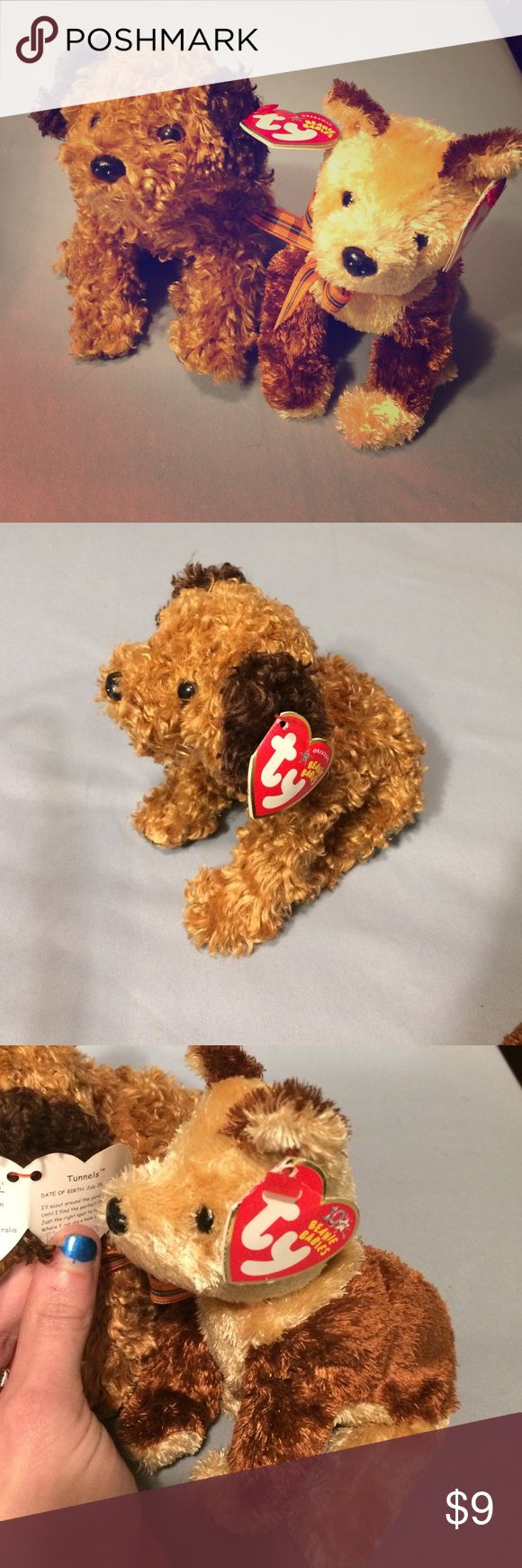 Doggie beanie babies Fidget '03 and Tunnels '04 pristine condition. ty inc Other