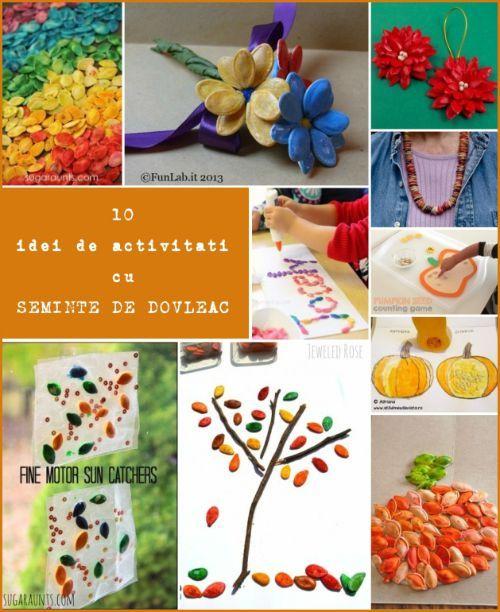 10 idei de activitati practice cu seminte de dovleac