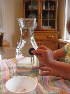 Fun with magnets: place paperclips into a vase of water, then use a magnet to guide them up to the top