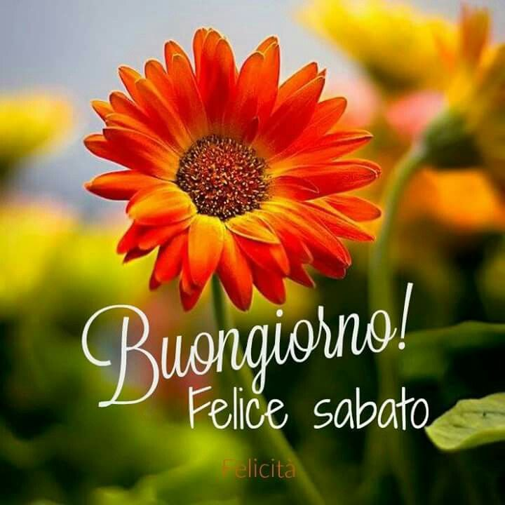 18 Best Images About Buongiorno Buon Sabato On Pinterest