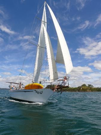 Day sailing Bay of Islands