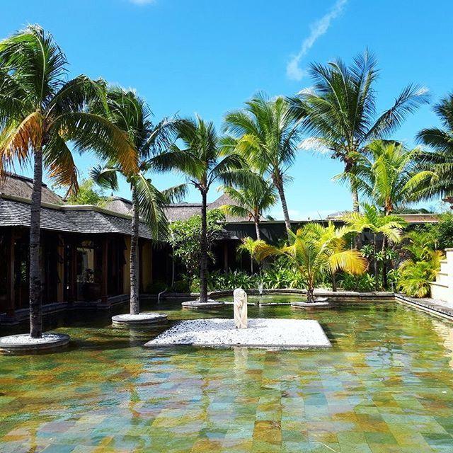 Bazaar está em Mauritius para conhecer a rede dos luxuosos hotéis @beachcomber_hotels. São 9 hotéis diferentes que oferecem muitos tipos de esportes campos de golfe e um contato vivo com a natureza da ilha e a cultura local. Spas com diversos tratamentos e restaurantes de alta gastronomia completam o roteiro. (Por @f.stoffa) #beachcomberexperience @boardinggatebrasil via HARPER'S BAZAAR BRAZIL MAGAZINE OFFICIAL INSTAGRAM - Fashion Campaigns  Haute Couture  Advertising  Editorial Photography…