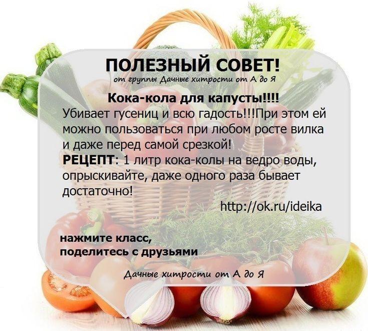 http://ok.ru/profile/555239626403/statuses/65217989045155