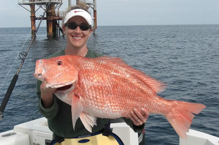 What Are The Sporting Qualities Of A Red Snapper In Los Suenos? http://gocostaricafishing.com/news/view/374/What_Are_The_Sporting_Qualities_Of_A_Red_Snapper_In_Los_Suenos_.html?source=pi