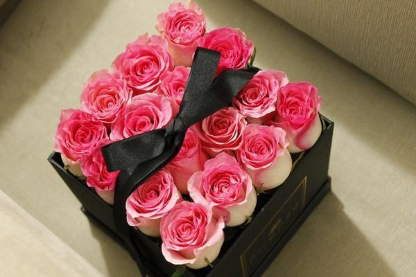Venezia 16 Rosas Rosadas