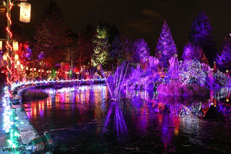 70 Best Images About Midnight In The Garden On Pinterest Gardens Search And Victoria British