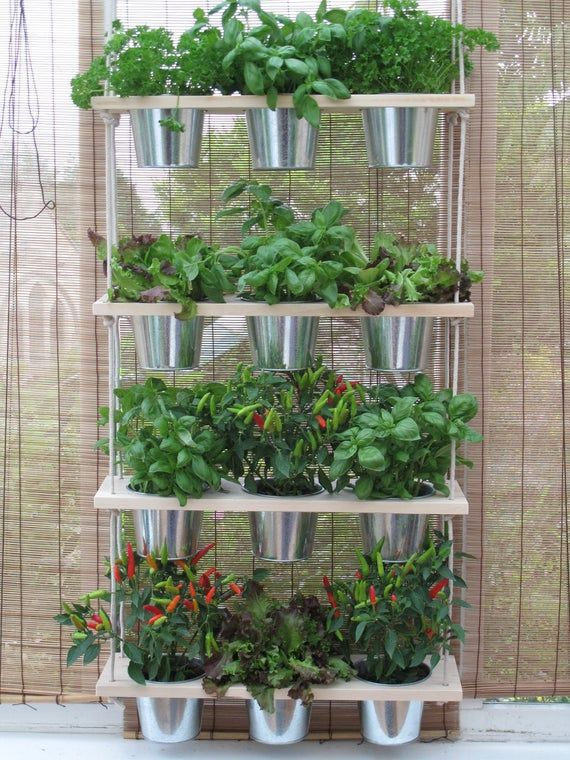 Hanging Shelf And Pots Kitchen Herb Garden Windowsill Etsy Herb Garden In Kitchen Indoor Planters Diy Planters Indoor