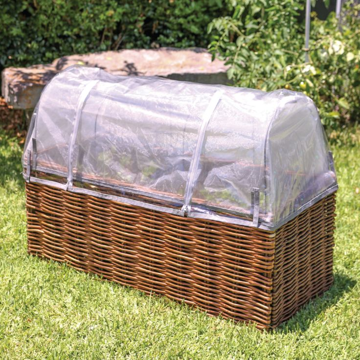 With our Willow Starter pack, protect your plants come rain hail or shine!