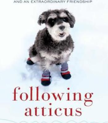 14 best books images on pinterest doggies dogs and adorable animals following atticus pdf fandeluxe Choice Image