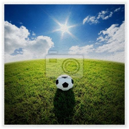 Sunny Open Soccer Field Wall Mural At Http://www.visionbedding.com Part 53