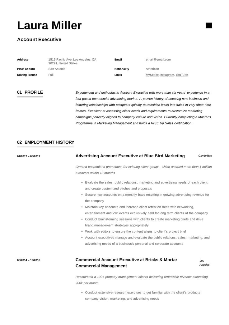 Account executive resume template manager resume resume