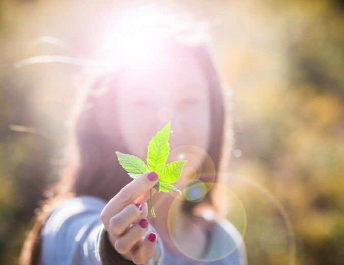 Tell Us How Cannabis Transformed Your Life | Reset.me