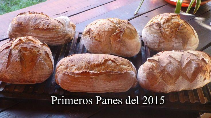 Primeros panes del 2015