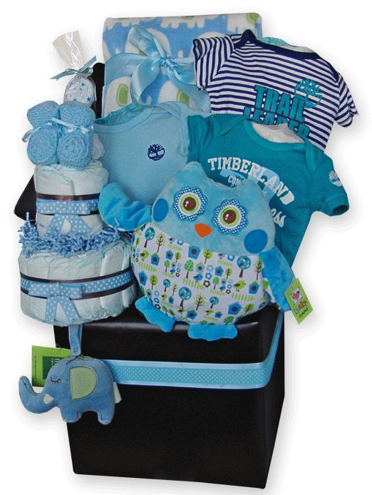 40 best baby gift baskets toronto images on pinterest baby gift baby boy gift basket storage ottoman diaper cake owl pillow toronto negle Gallery
