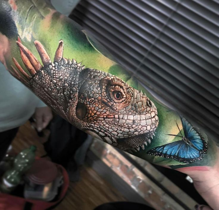 Aztec Chameleon Tattoo: Best 25+ Iguana Tattoo Ideas On Pinterest