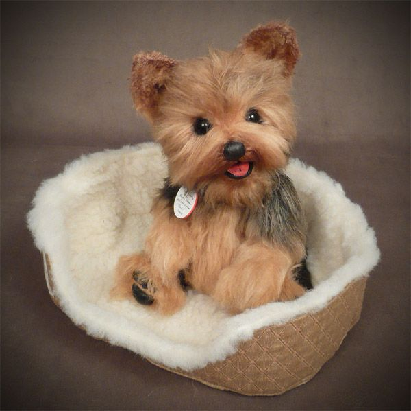 """""""Rocky"""" Yorkshire Terrier from Palm Puppies© and Dolly Dogs Gallery Mill Creek Creations Palm Puppies©"""