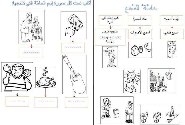 The five senses in Arabic. lesson+exercises P 2/4