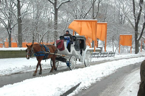 pin snow ride carriage - photo #21