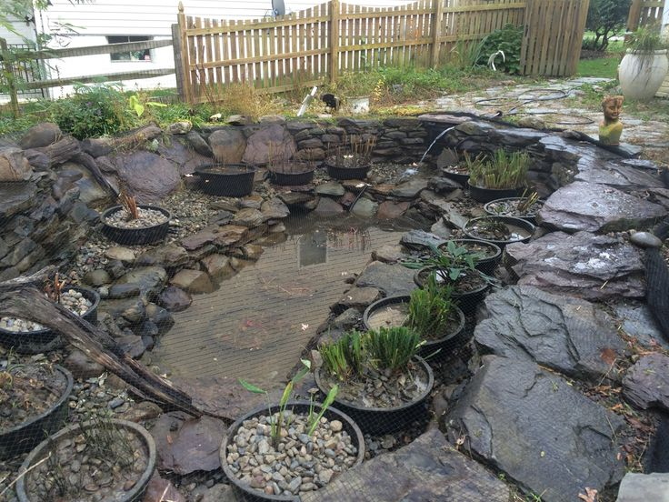 17 best images about pond and water garden diy ideas on for Rock ponds designs