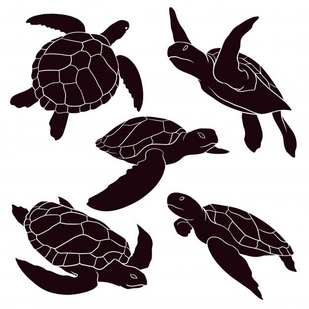 Hand Drawn Silhouette Of Sea Turtle Turtle Silhouette Sea Turtle Drawing Animal Silhouette