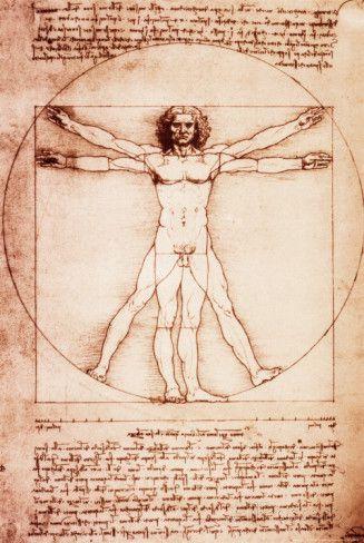 Vitruvian Man Posters by Leonardo da Vinci at AllPosters.com