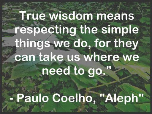 True wisdom means respecting the simple things we do, for they can take us where we need to go. | Aleph - Paulo Coelho - www.comunidadcoelho.com - www.paulocoelhoblog.com
