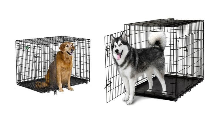Top 5 Best Cheap Dog Kennels Best Cheap Dog Cages Cheap Dog Kennels for Sale