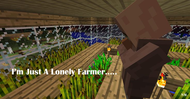 Minecraft Farmer HISHE Quote