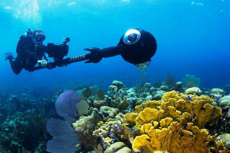 Christophe Bailhache en pleine prise de vue sur le récif corallien de l'île Glover, dans les Cayes du Belize, un archipel de la mer des Caraïbes. Son drôle d'appareil photographique permet de réaliser un outil de promenade virtuelle à la manière d'un Street View. Le programme XL Catlin Seaview Survey (initialement Catlin Seaview Survey), lancé en 2012, étudie les récifs coralliens de la planète. Celui-ci, au Belize, est l'un des plus grands du monde, après celui de la Grande Barrière de…