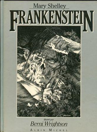 Frankenstein - Analysis of Society